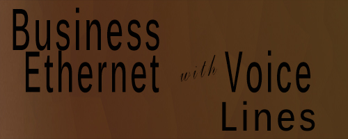 Business Ethernet with Voice Lines