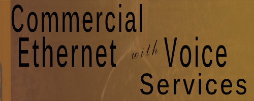 Commercial Ethernet with Voice Services