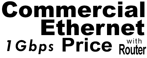 1Gig Commercial Ethernet Price with Router