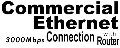 3000Meg Commercial Ethernet Connection with Router