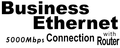 5000Meg Business Ethernet Connection with Router